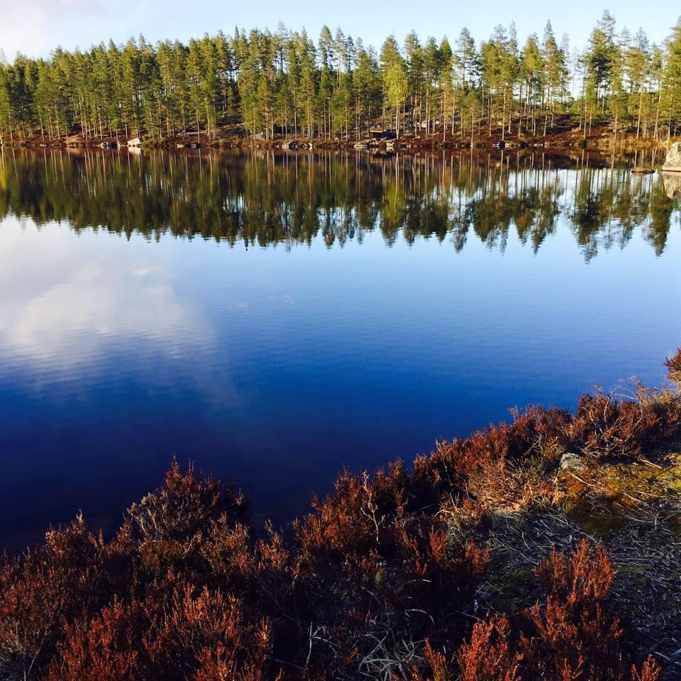 fiskvardsforeningen-fb.jpg