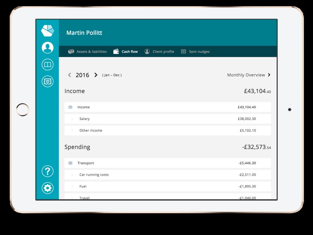 Adviser's detailed view of customer's finances