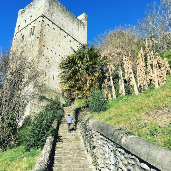 la Tour Monréal