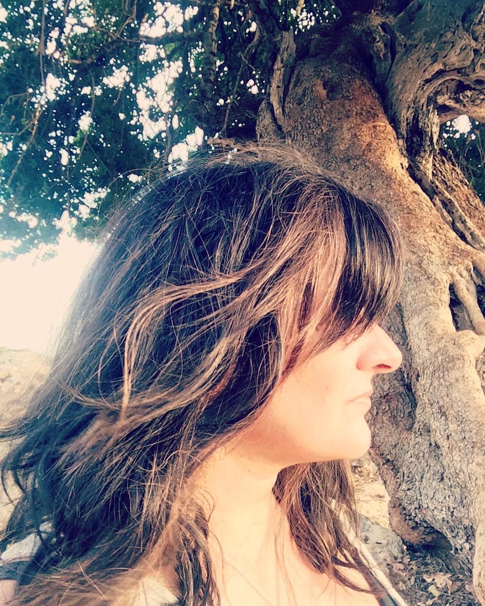 Dal under Olive Tree