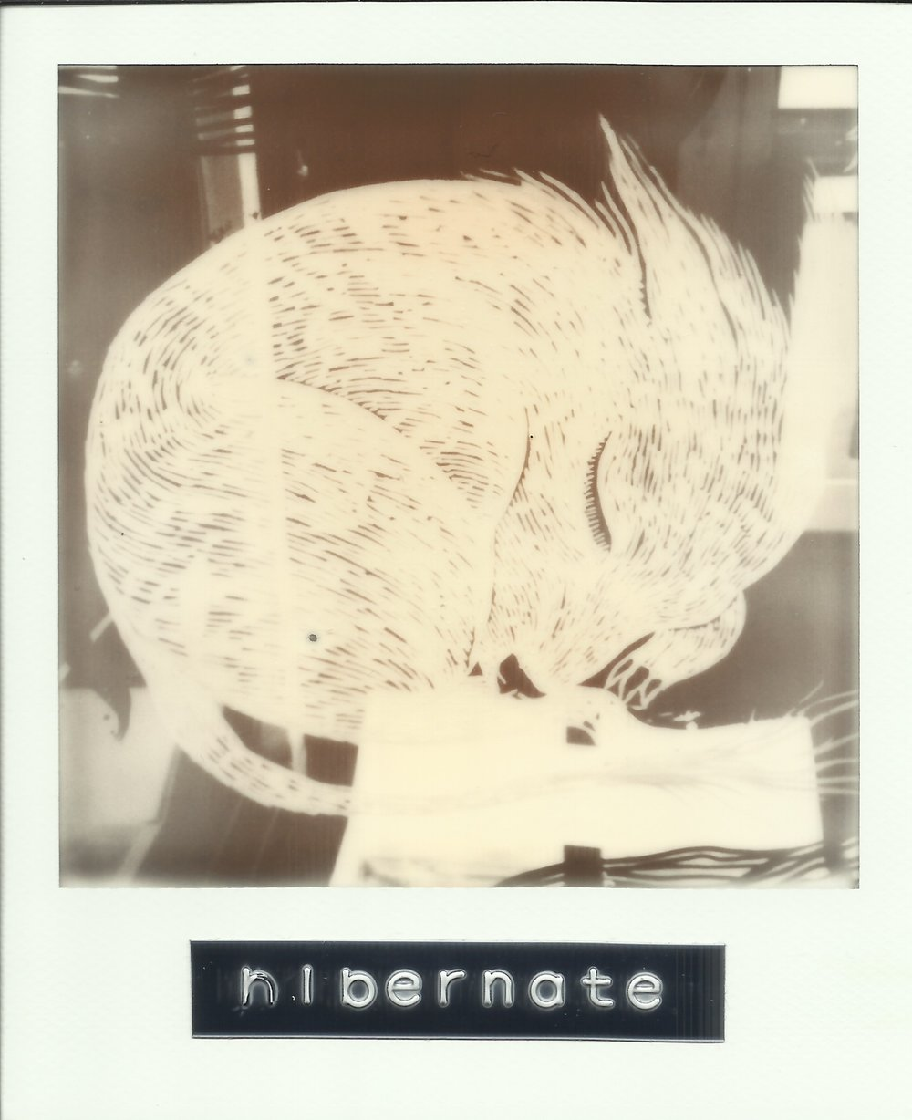 PolaroidOracle1 1.jpeg