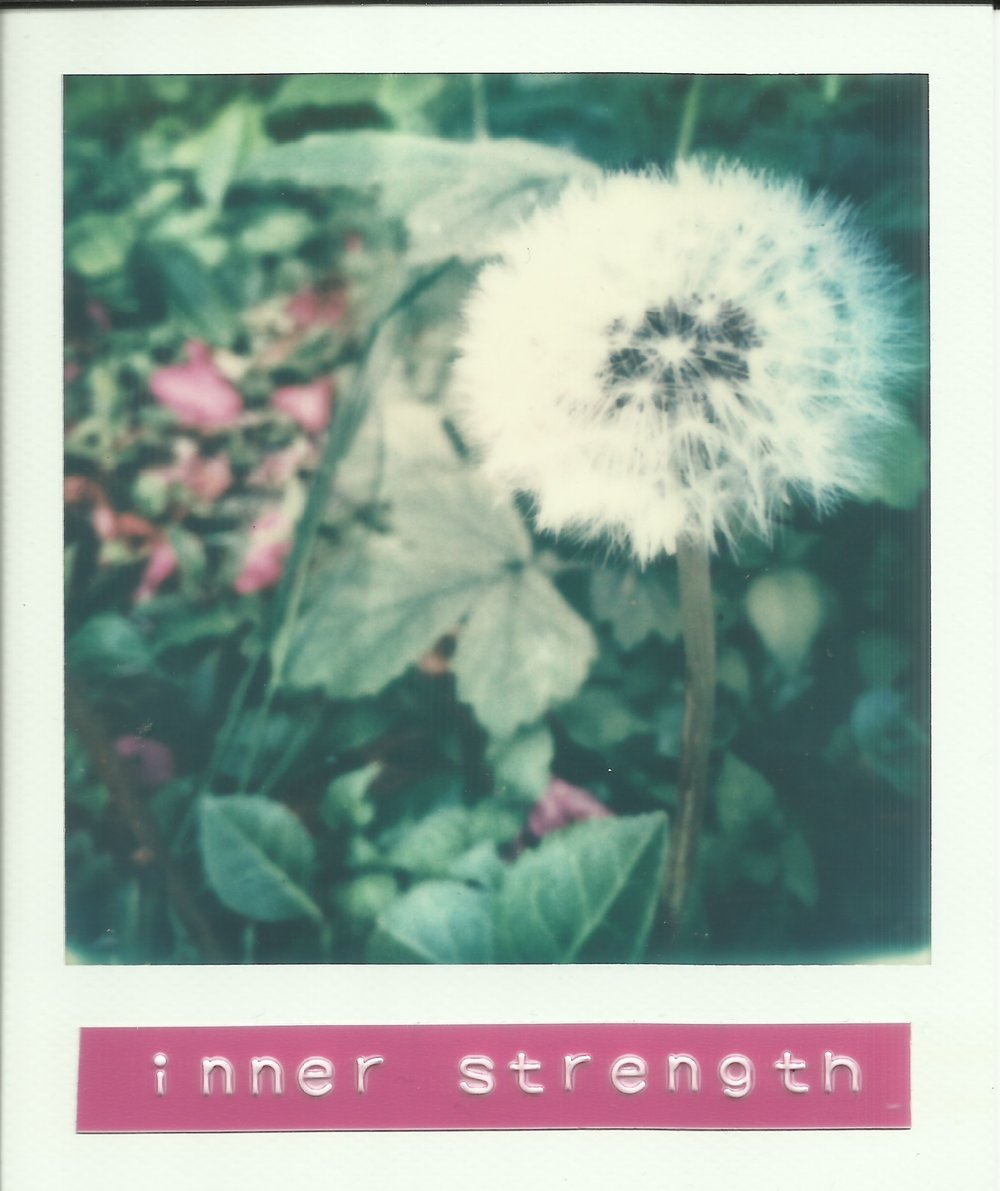 PolaroidOracleinnerstrength.jpeg