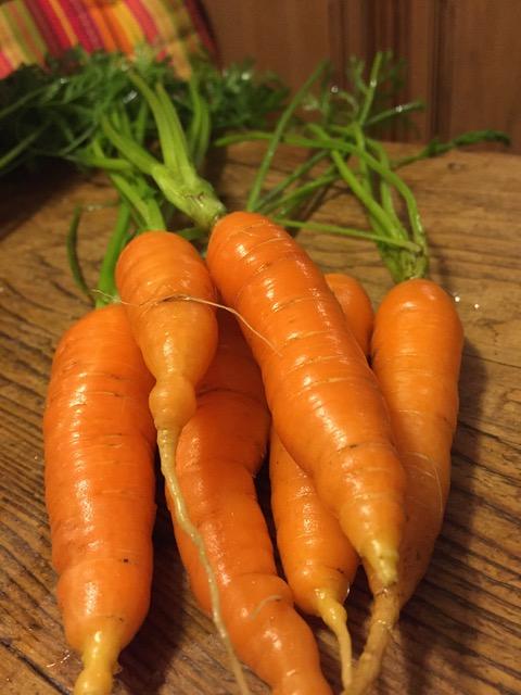 carottes..jpeg
