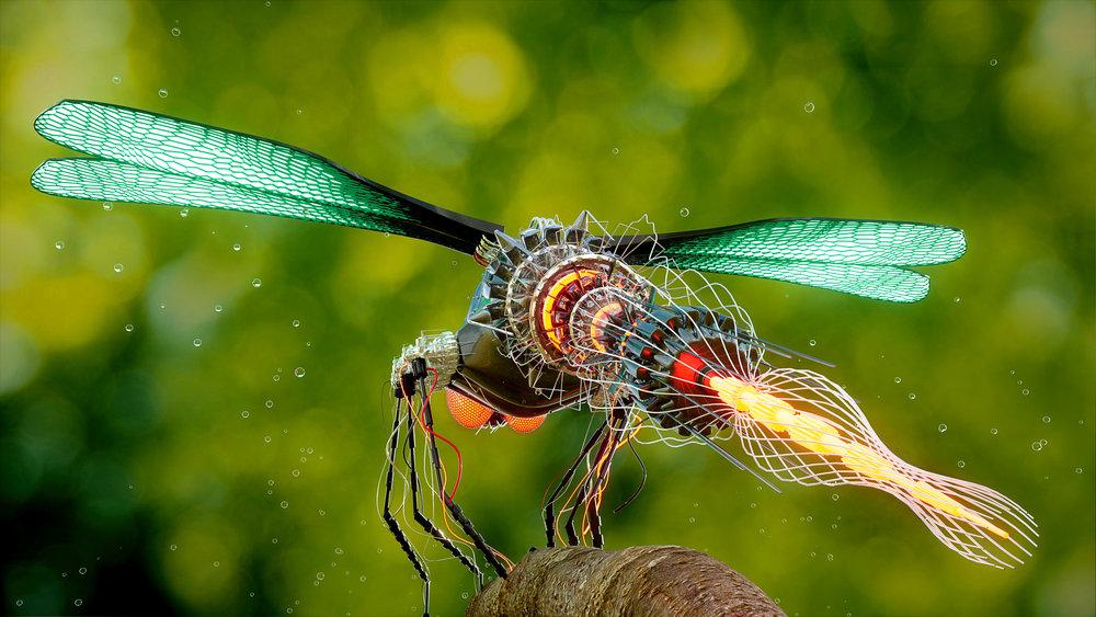 ALTSHIFT_Dragonfly_02.jpg