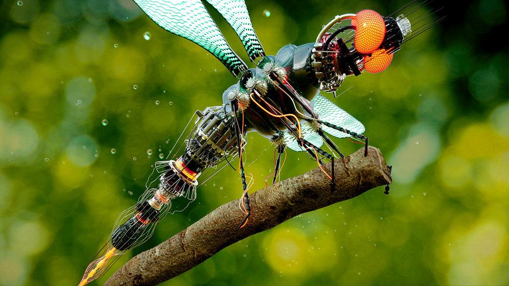 ALTSHIFT_Dragonfly_03.jpg
