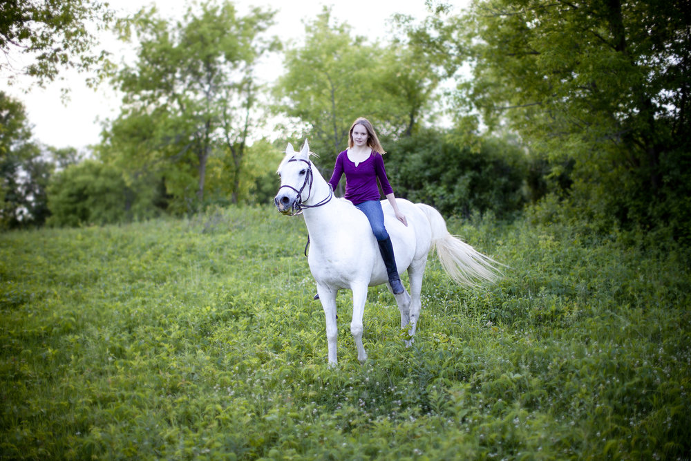 senior portrait on arab horse minnesota