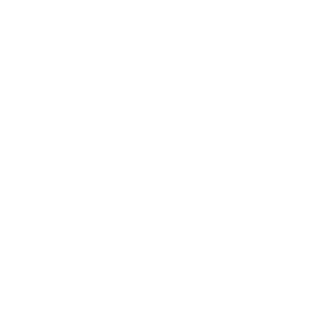 Red Zeppelin Productions
