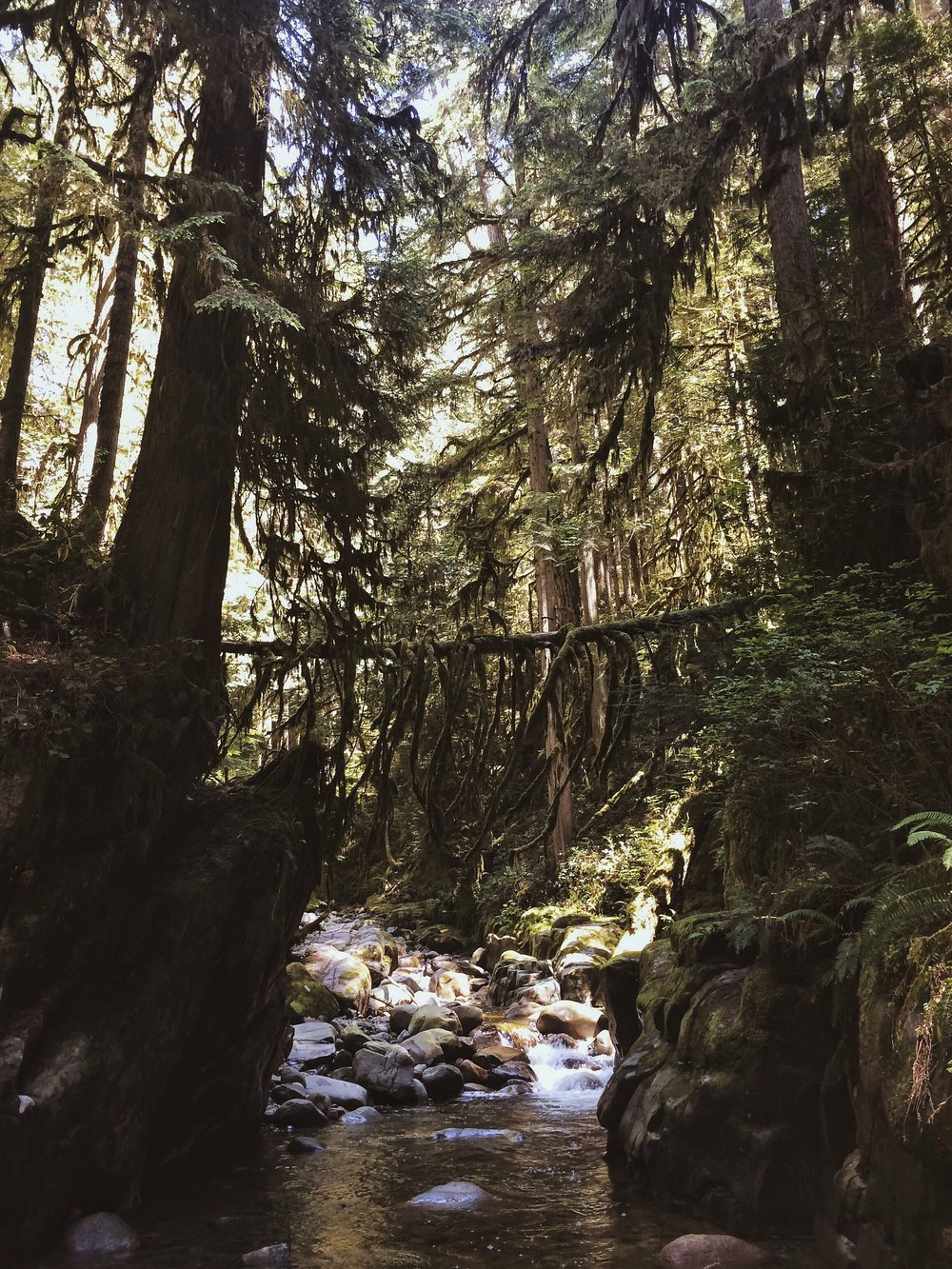 Hiking in Vancouver, British Columbia