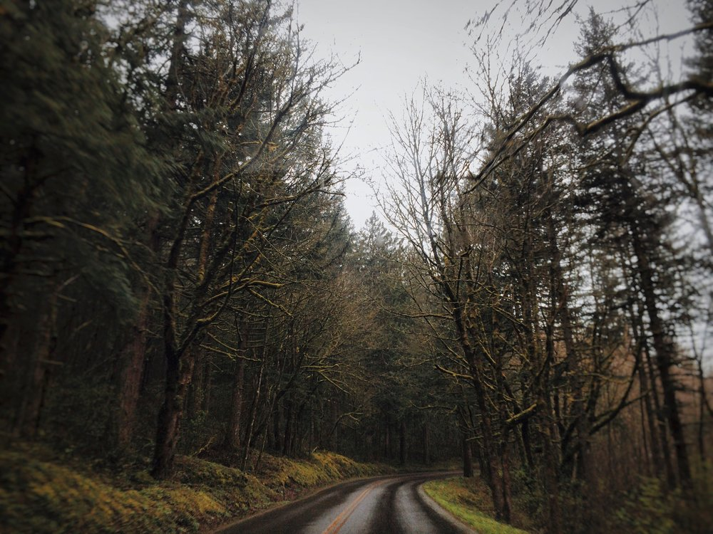Roadtrip to Multnomah Falls