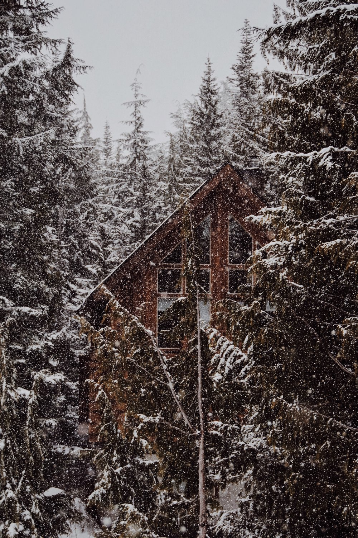 Cabins at Mount Hood near Portland, Oregon
