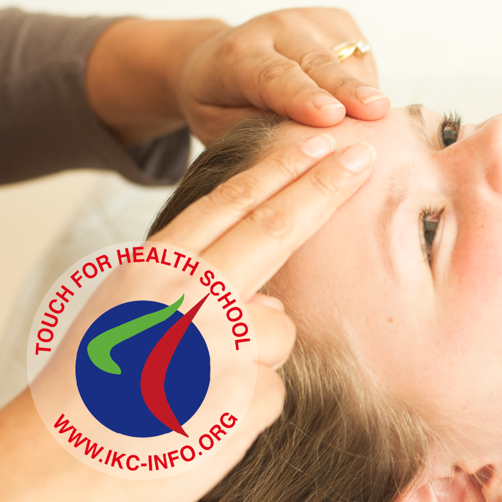 Touch For Health - Our workshops are taught by certified TFH Instructors, trained by the faculty of the International Kinesiology College.View all TFH courses >
