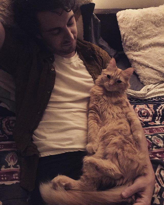 Lounge cat. . . . #caturday #catsofinstagram