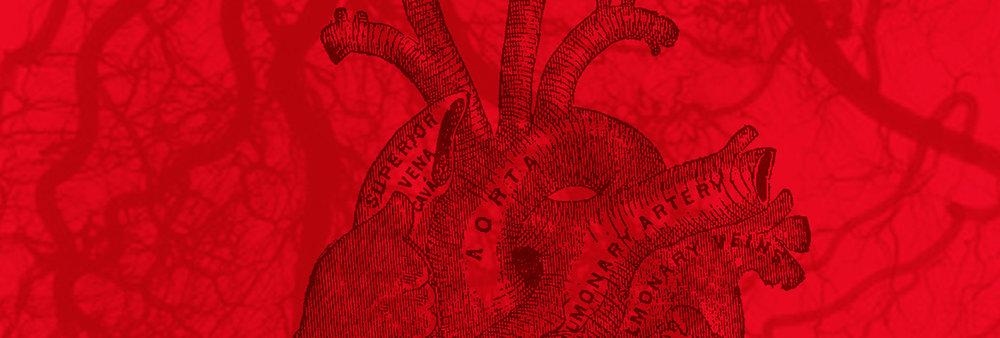 CardioVascular Services -