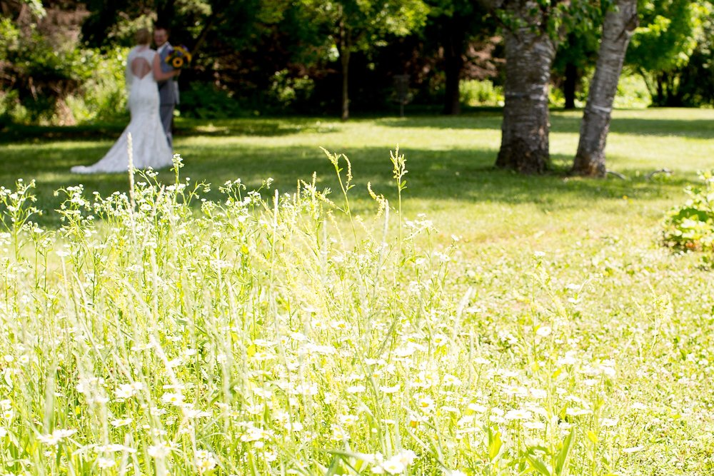 5Alice Hq Photography | Brit + Luke Southern MN Wedding.jpg