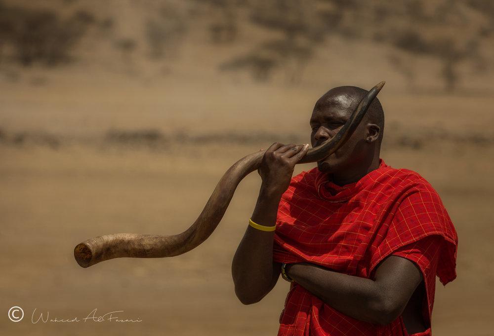 Horn of the Greater Kudu | Tanzania