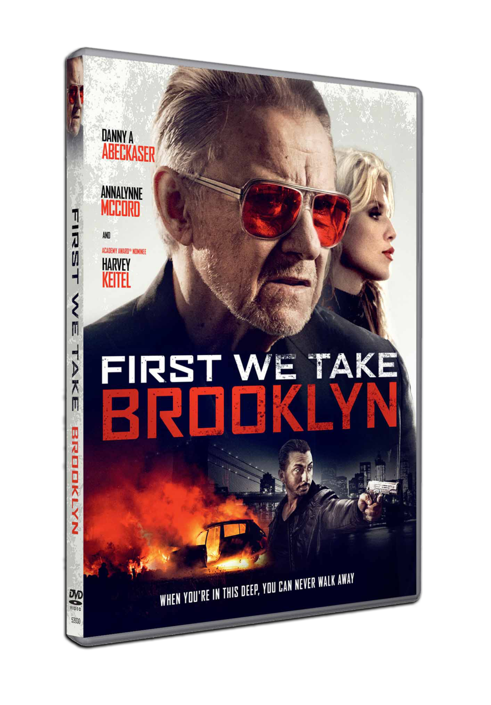 3909534_FIRST-WE-TAKE-BROOKLYN-[SPHE-ACQ]DVDSTD-13D-Pack-Shot---Copy.png