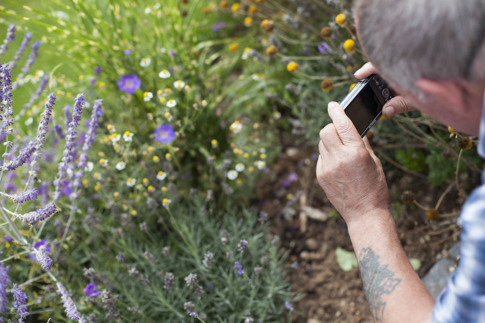 man taking photo of nature during mindfulness photography workshop at Franklyn Hospital Exeter