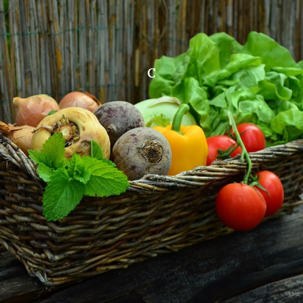 Boston-Cooking-easy-market-coaching-support-vegan-vegetarian-plant based-healthy