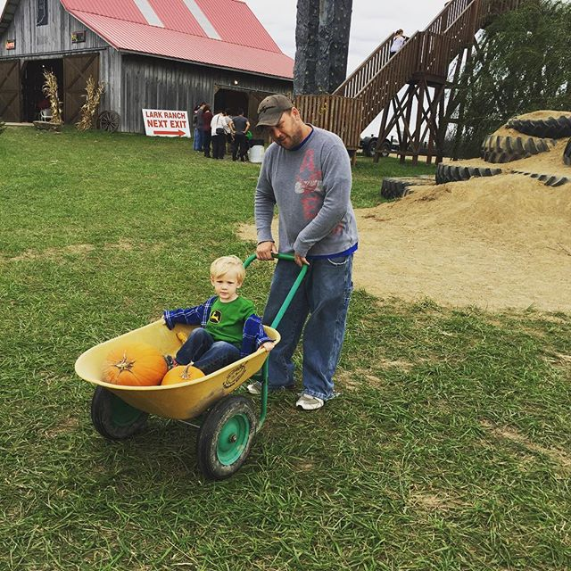 #larkranch2016 #larkranch #pumpkinpicking #cornmaze #pumpkinpatch #indy #indianapolis #thingstodoinindianapolis #familyfunindy #fall