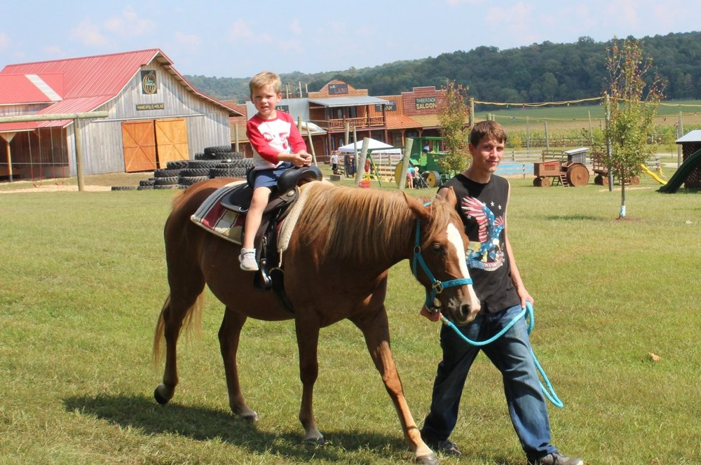 Pony Rides  (200 lbs or less) $4 -