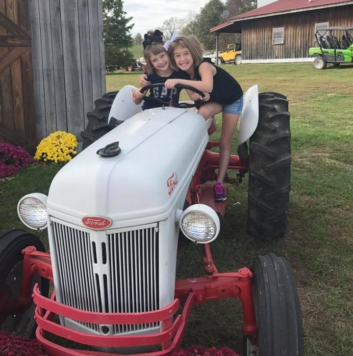 antique tractors.jpg