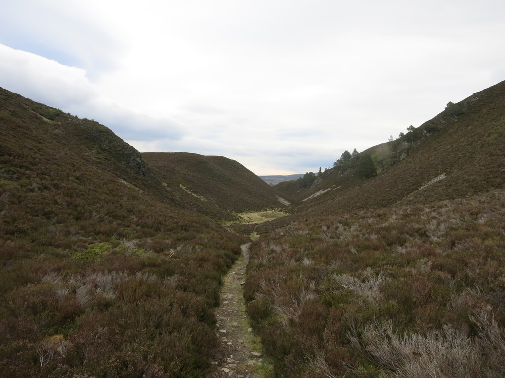 Braes of Abernethy