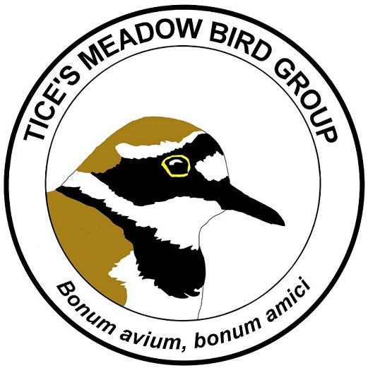 Tice's Meadow Bird Group