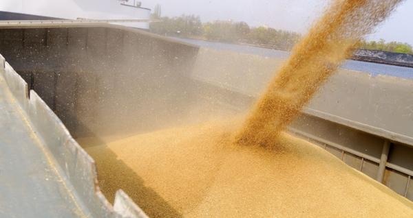 grain barge - w.jpg