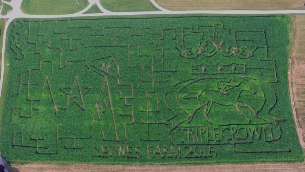 The 2018 Maze at Devine's Corn Maze and Pumpkin Patch.