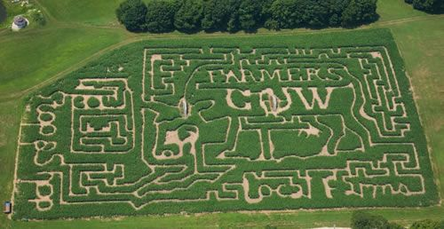 pinterest.com (2011 maze shown)