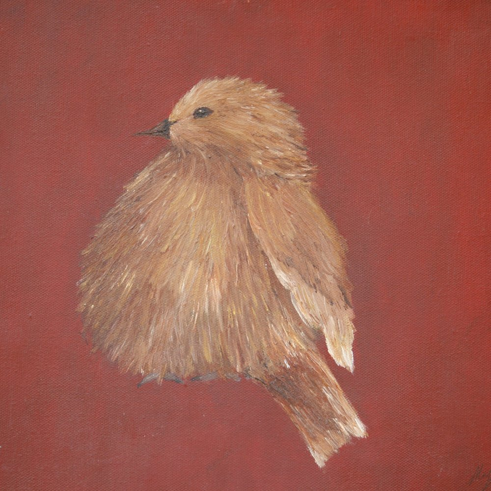 """The Fat Bird"" 12x12 Oil on Canvas -(Yes, the bird that started it all)"