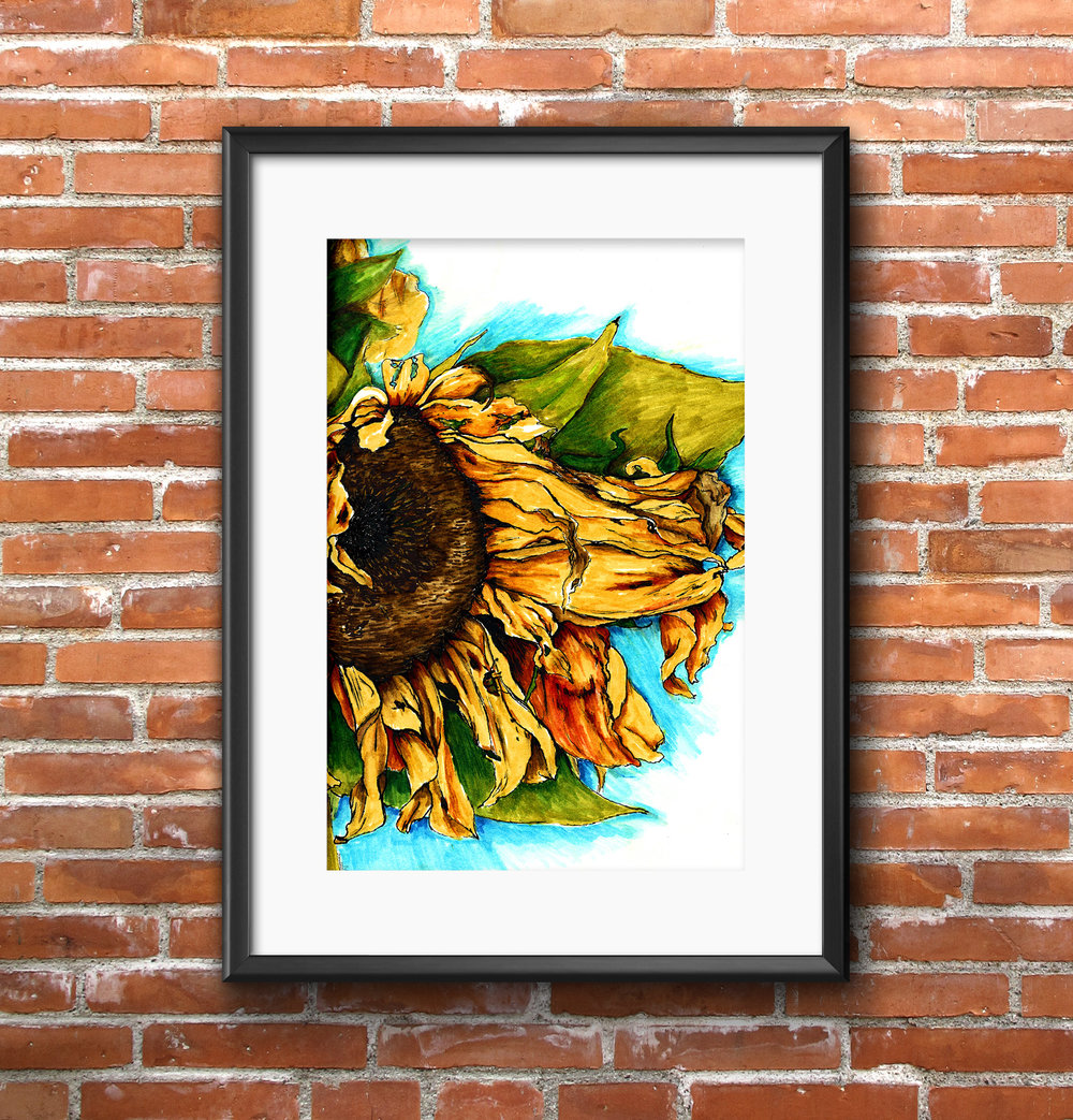 Framed Prints Art   Starting at $35   (more options available)