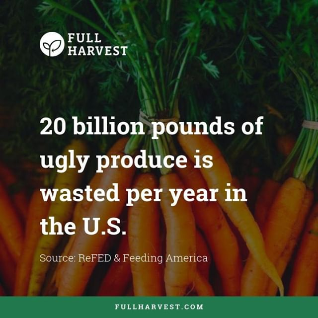 What could we do with 20 billion more pounds of food? Take the weekend to think about the impact you or your business can make on #foodwaste in America. #foodwastefriday #foodforthought #foodfacts #fullharvest #foodwaste #zerohunger #globalgoals #sustainability #aginnovation