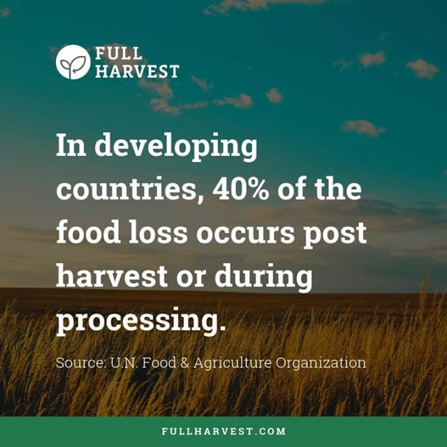 Our vision is a world with 0% food waste and 100% full harvests, but today, over 40% of food loss occurs post harvest in developing countries. #foodwastefriday #foodforthought #foodfacts #fullharvest #foodwaste #zerohunger #globalgoals #sustainability #aginnovation