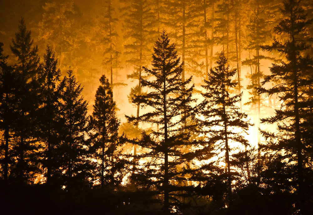 Emergency Preparedness – Wildfire Update - In October, some of the worst fires in California's history burned thousands of acres of land, thousands of homes were lost, 42 people perished, and thousands of people were displaced. Impacted communities are still reeling from the devastating losses.