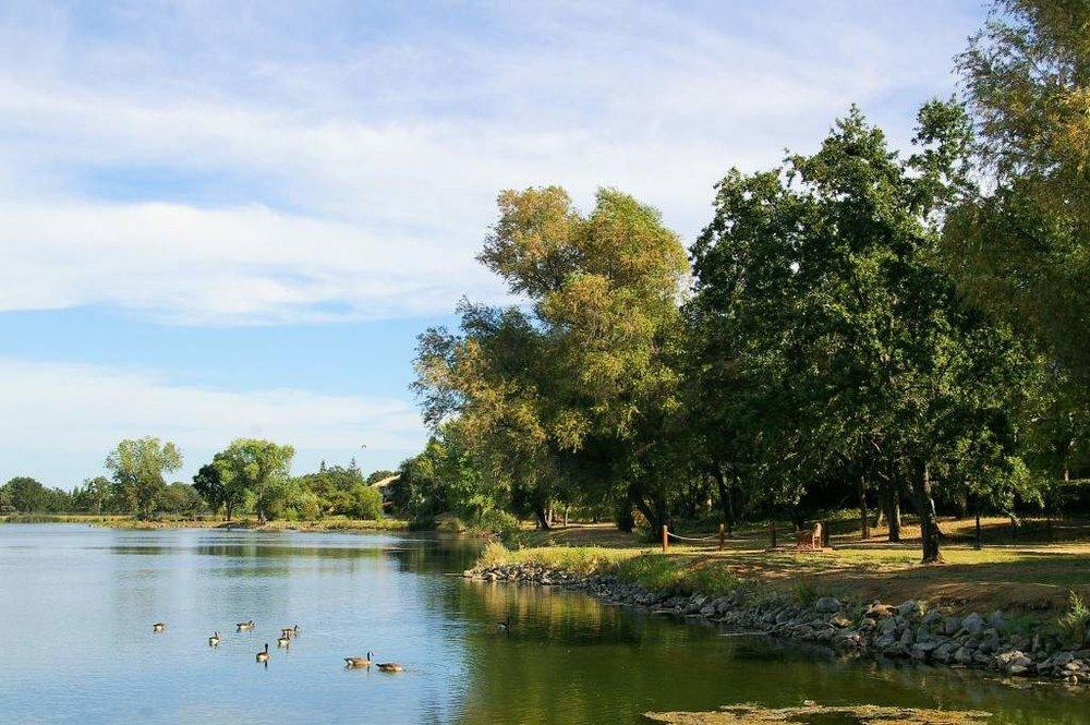 Cameron-Park-Lake.jpg