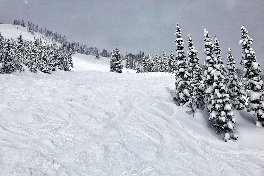 Crystal Mountain Ski Day