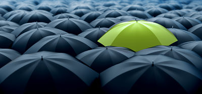 Green-umbrella-471497222_1500x702_opt.jpg