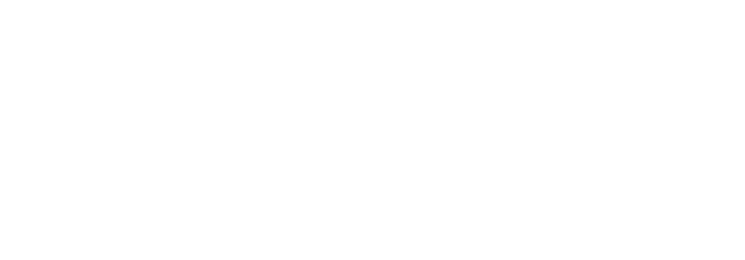 John Elleson for Congress