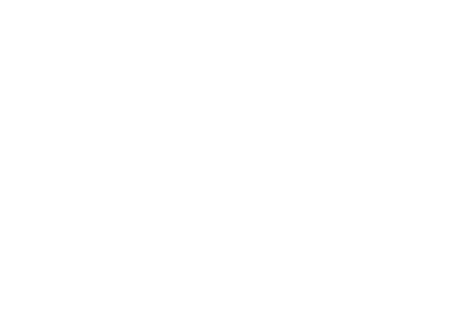 The Fizz Fellas