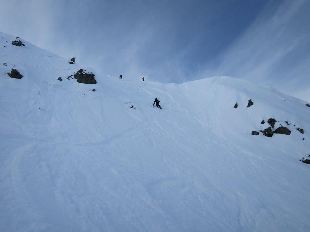 steeps.jpeg