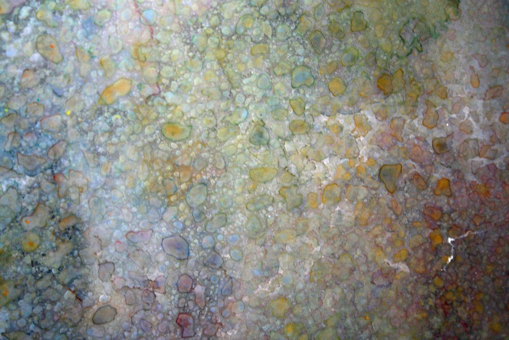 J. Warnock, Coral Series ,6, Mixed Media, 420mm x 300mm (1).jpg