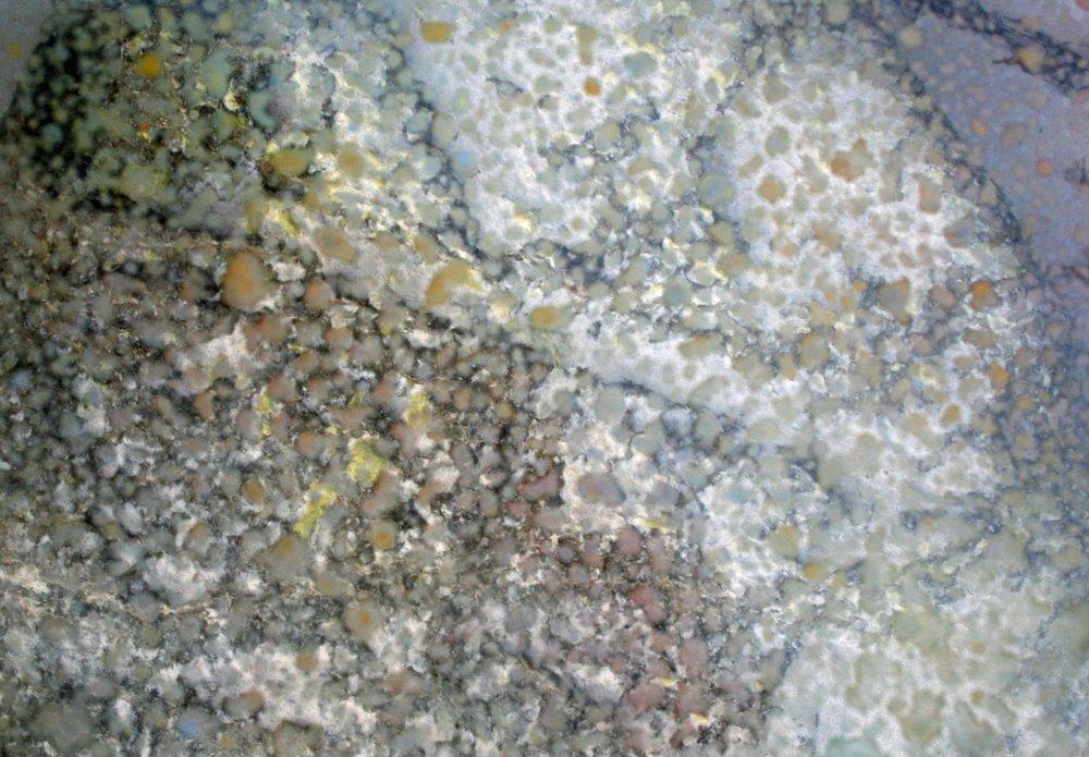 J.Warnock, Coral Series,5, Mixed Media, 420mm x 300mm (3).jpg