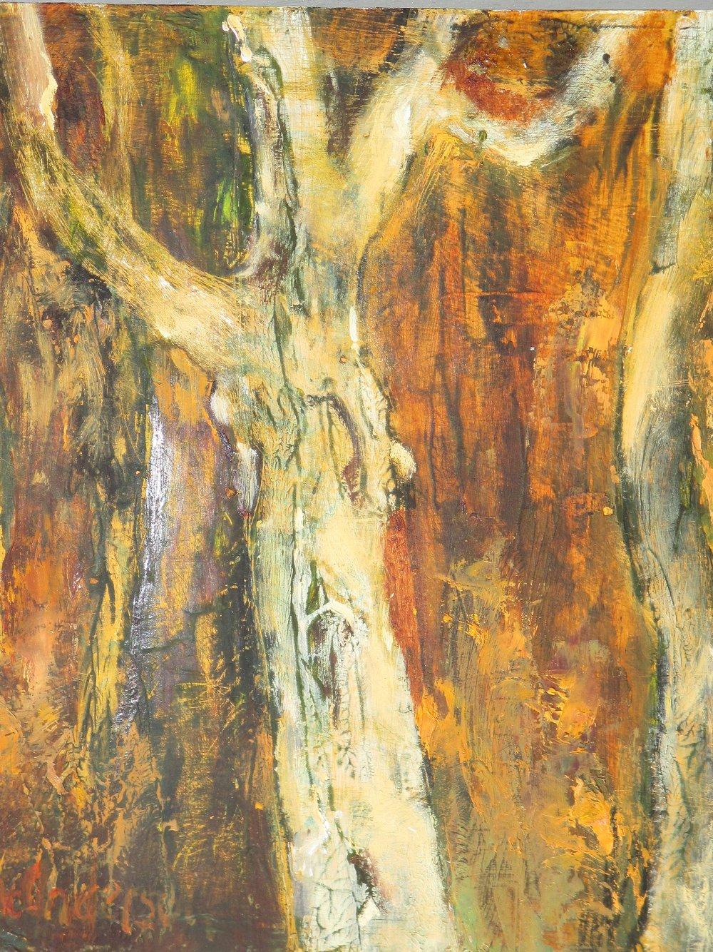 J Anderson Old-Trees-oil-on-board-20x20-june-Anderson1.jpg