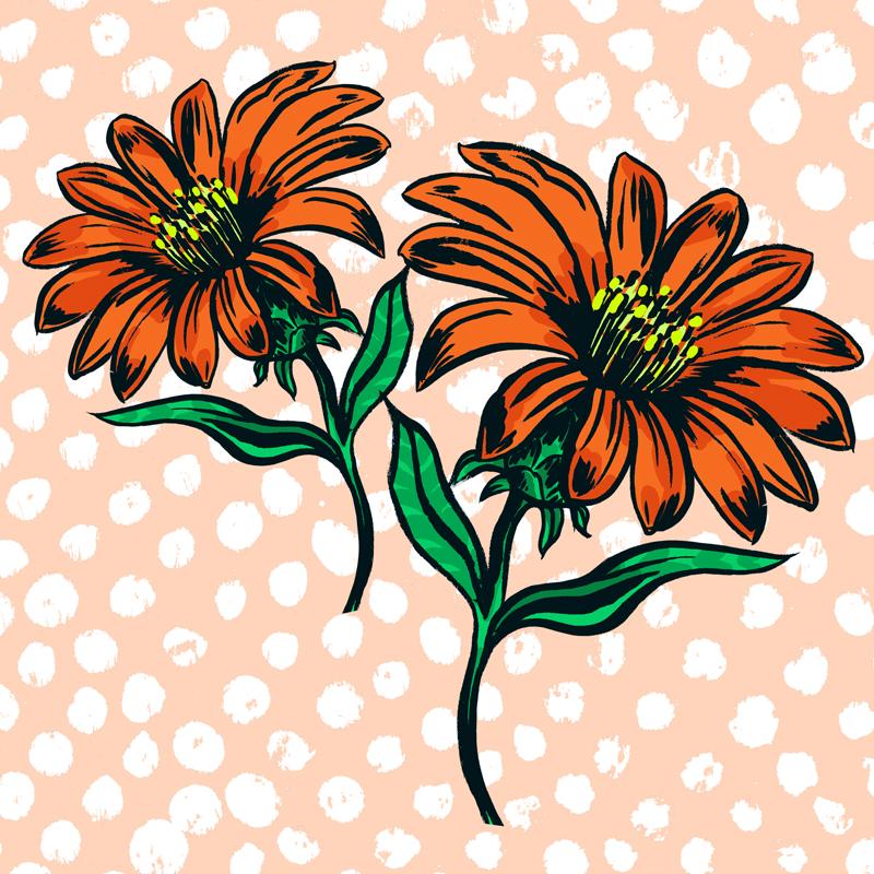 FloraBotanicaBambinoWEB.jpg