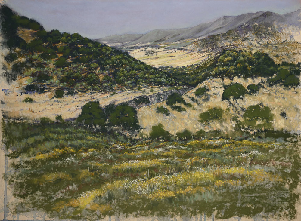 Bronwyn Gwen Holmes, The heat of summer, Pastel over watercolour on pastelmat paper, 42 cm x 62 cm