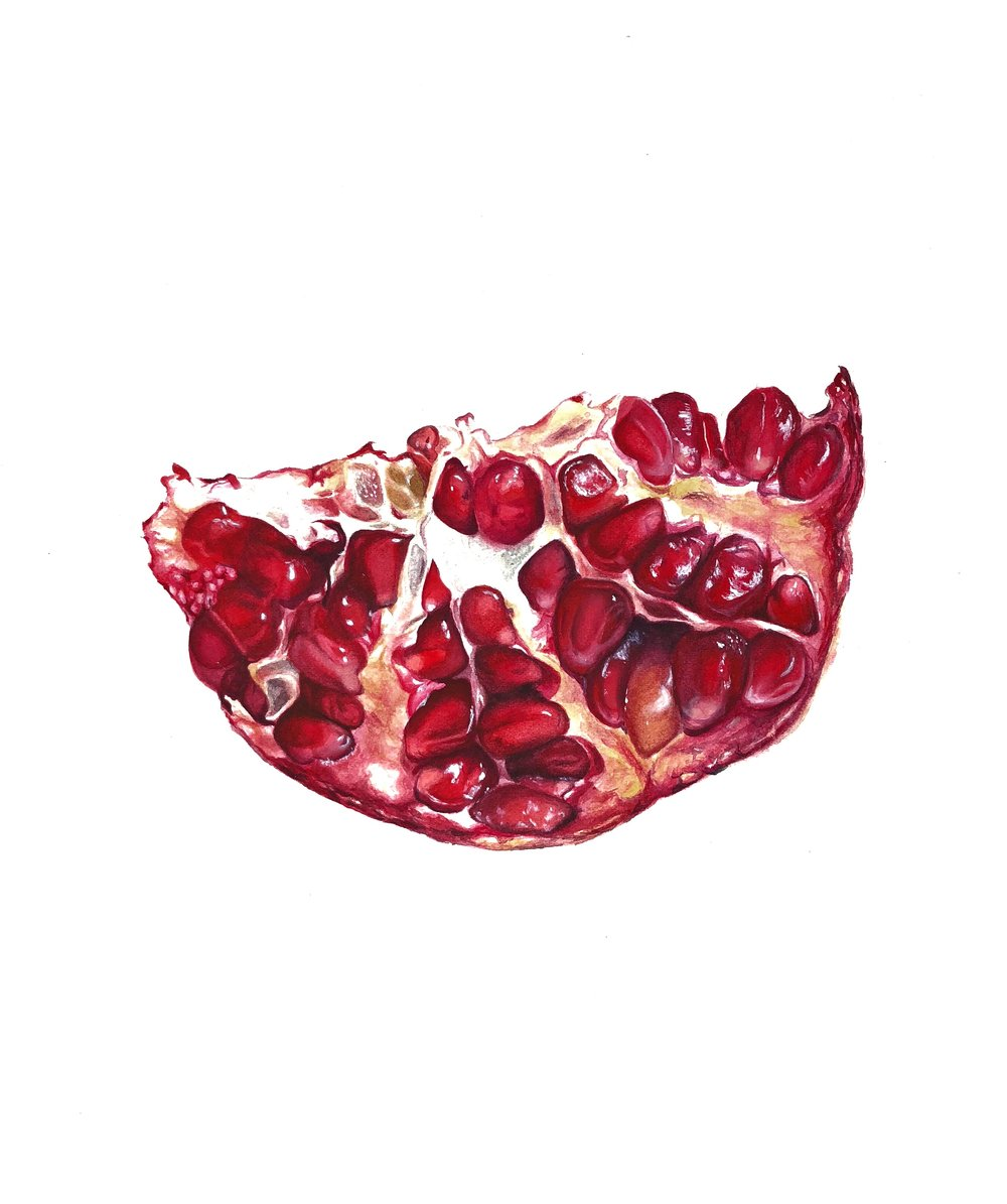 Anna Timoshenko, Pomegranate, Watercolor on paper, 27cm x 29 cm x 0.05 cm,  https://www.instagram.com/annatimoshenkoart/