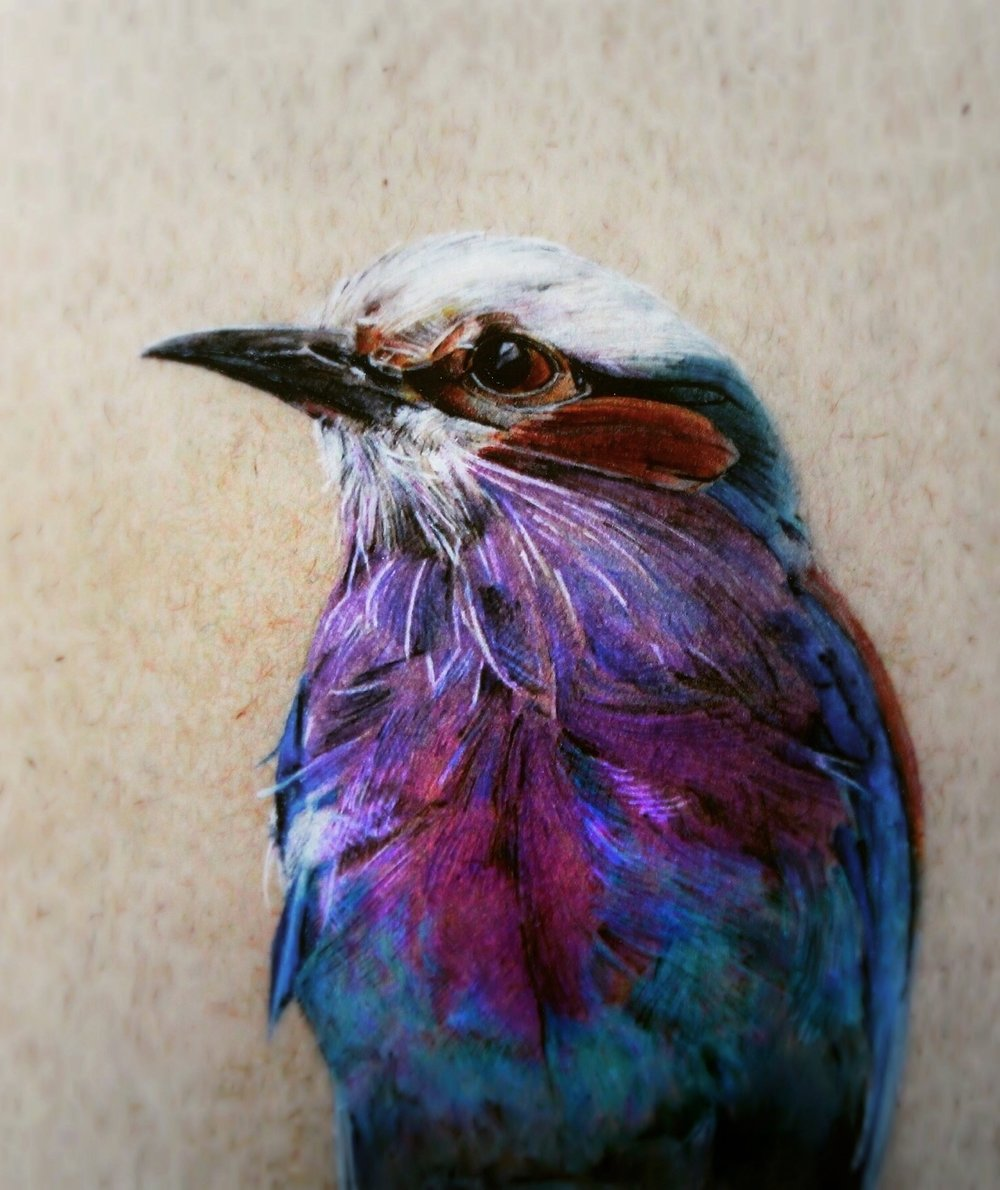 People's Choice Award Winner: 'Lilac breasted roller' by Christopher Durant