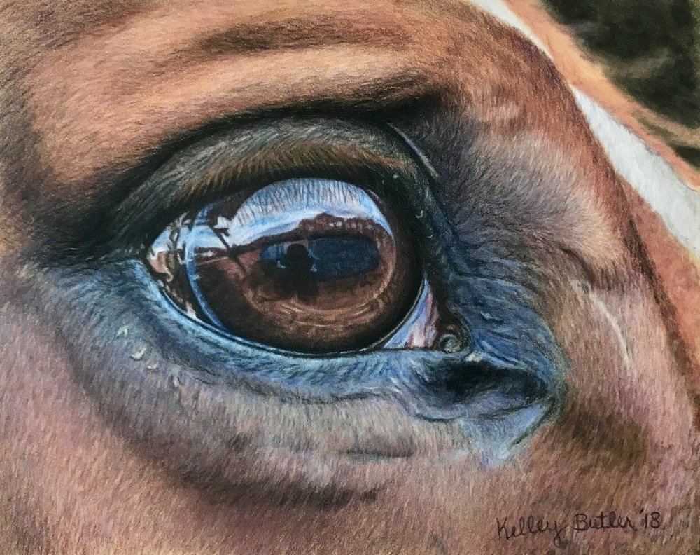 Kelley Butler , 'Mirror to the Soul', Pastel on paper, 30 x 24 cm