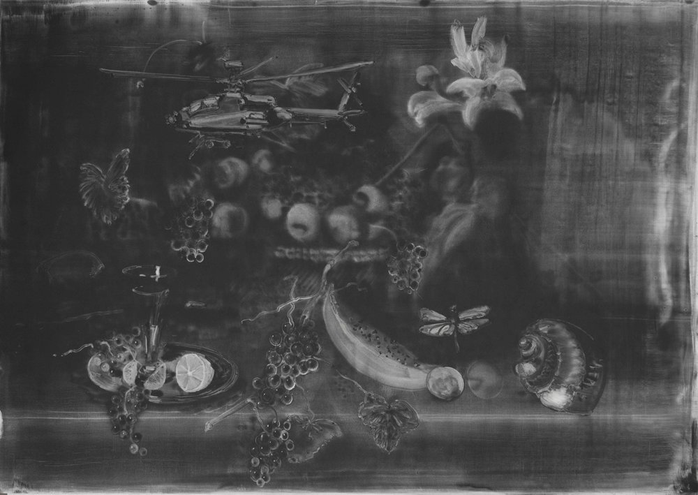 Christopher Cook  Still Life with Dragonfly  graphite and resin on paper, 72 x 102 cm  http://www.christophercook.cc